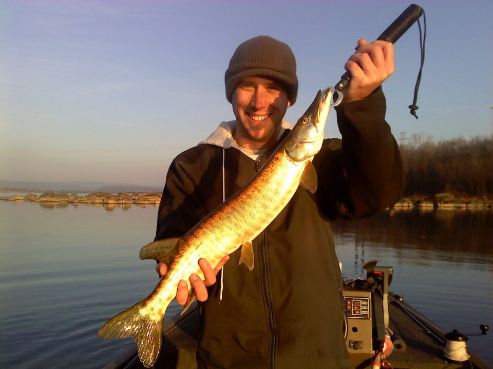 2010 fishing report for susquehanna river fly fishing and for Pa fishing report