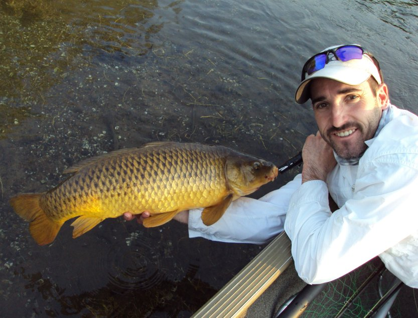 fishing report for susquehanna river fly fishing and spin